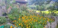 29_Garten